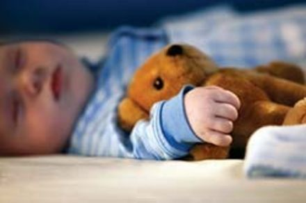 boy & teddy asleep